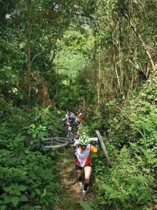 Baise bike carry